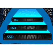 Web hosting for BIO REG & BIO SKD reports